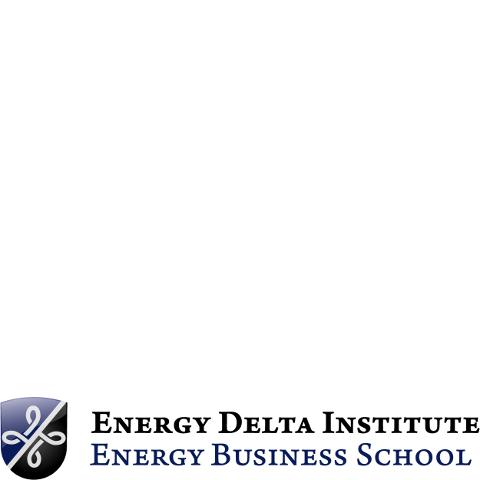 Energy Delta Institute